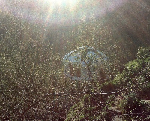 sunburst yurt